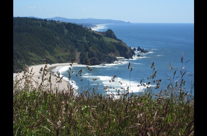 Taken From Cascade Head Trail